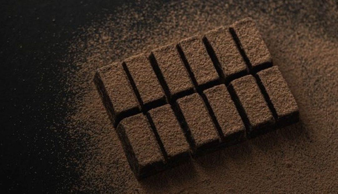 Cacaotera del Lago SRL