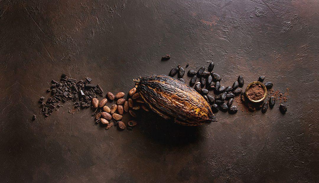 ¿Un planeta sin cacao?